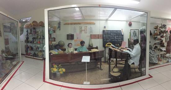 musée camélia